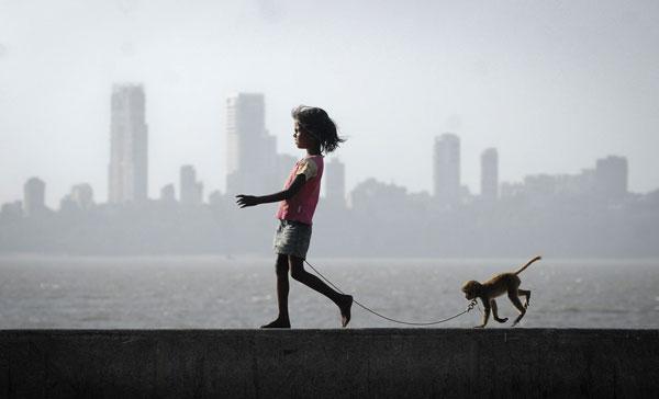 caminar-mico2